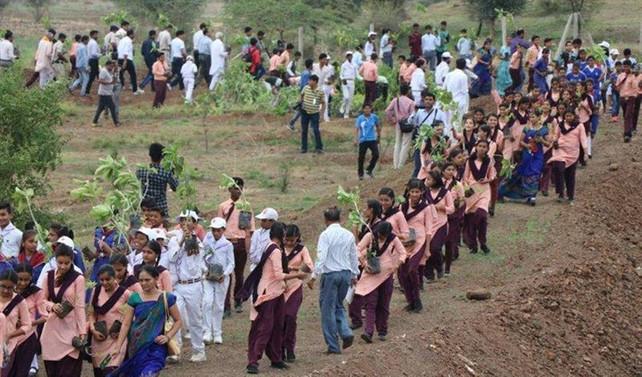 Hindistan'da 12 saatte 66 milyon fidan dikildi