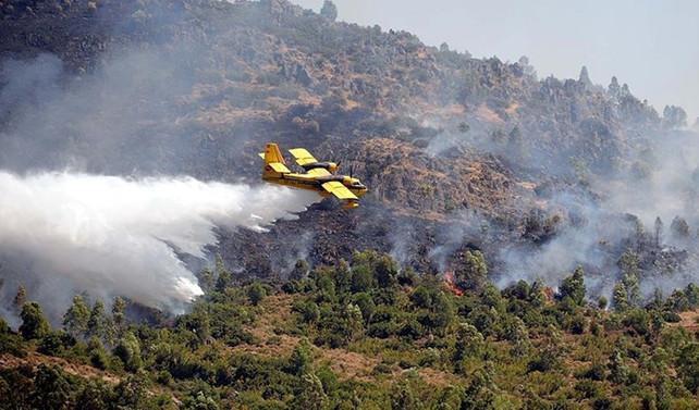 Meteoroloji'den 'orman yangını' uyarısı