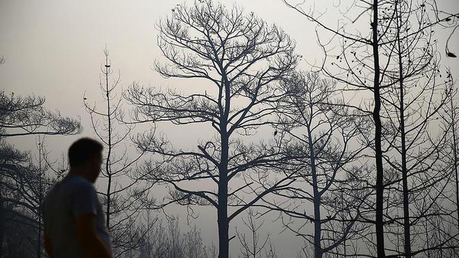 Orman yangınlarının yüzde 97'si insan kaynaklı