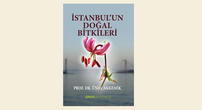 İstanbul'un 982 bitkisi