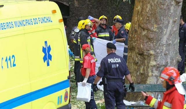 Portekiz'de ağaç düştü: 11 ölü