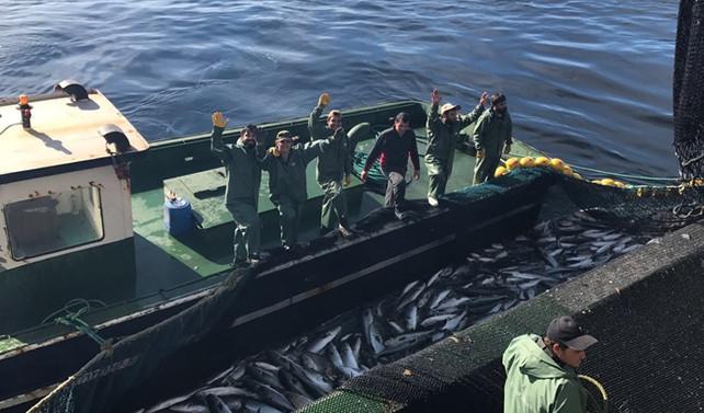 Türk balıkçılardan Moritanya çıkarması!