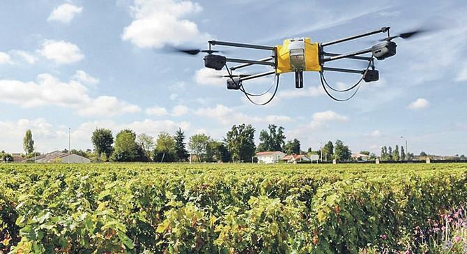 Günde 100 bin ağaç diken dronelar