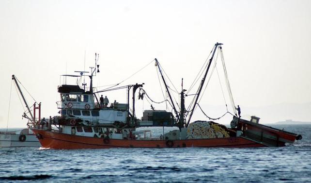 Av sezonu açılıyor, balıkçılar çifte bayram yapacak