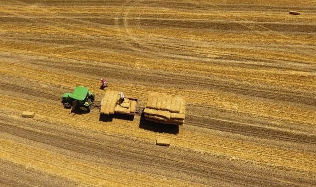 Kırsal kalkınma yatırımlarına, yüzde 50 hibe desteği