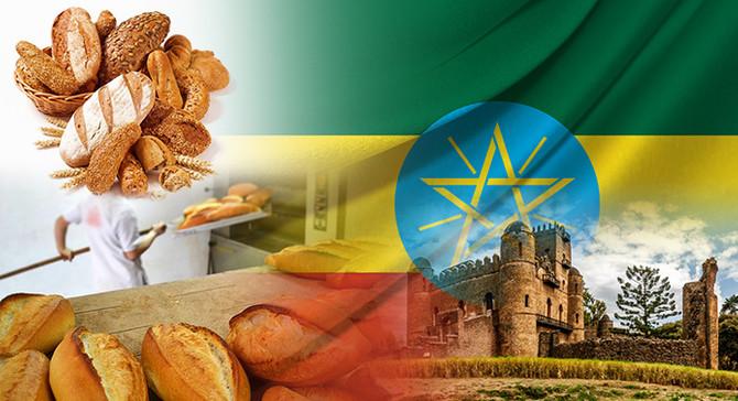 Etiyopyalı toptancı, fırıncılık ekipmanları ithal etmek istiyor