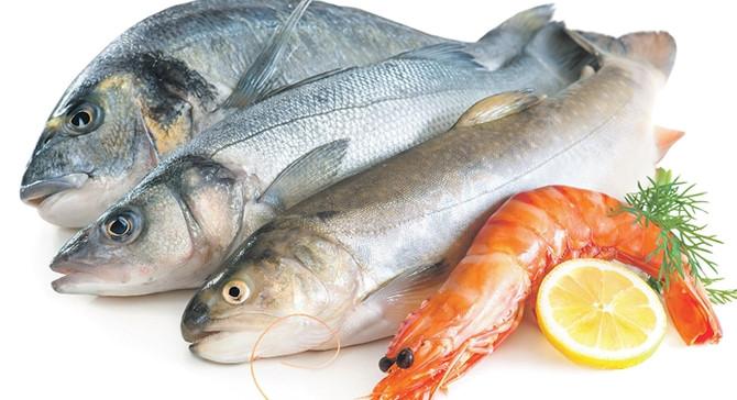 Su ürünlerinde üretim, tüketim ve ihracat politikası