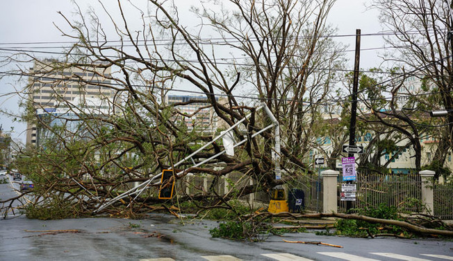 ABD'den kasırga mağduru Porto Riko'ya yardım