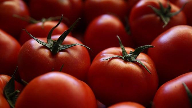 'Türkiye'den domates ithalatı, Rusya'nın et ihracatına bağlı'