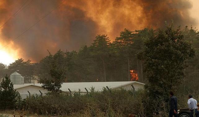 Bolu'da yangın nedeniyle mahalle boşaltıldı