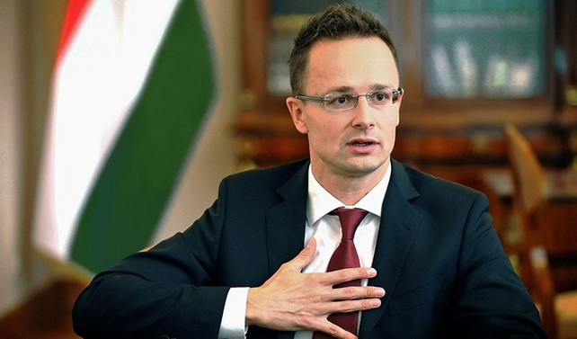 Macaristan'dan kota kararına tepki