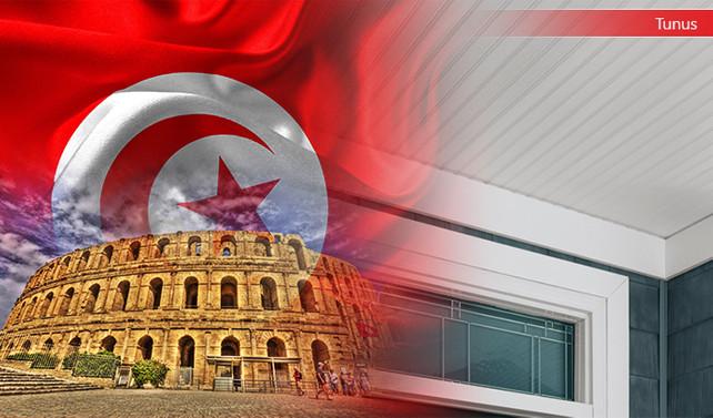 Tunuslu firma vinil yüzey kaplama 17.000 m2 satın alacak