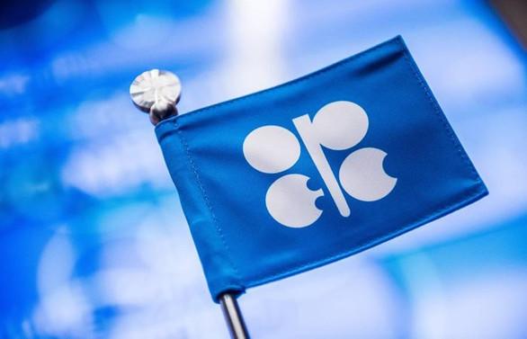 OPEC'in petrol üretimi arttı, payı aynı kaldı