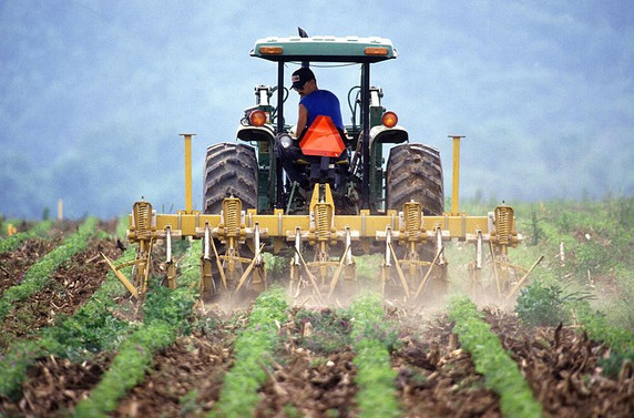 Çiftçi, tarımsal destek ve kredilerde düzenleme istiyor
