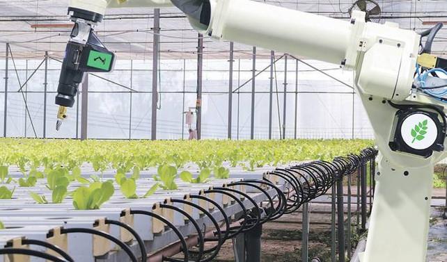 Tarımın geleceği veri toplama ve işlemede