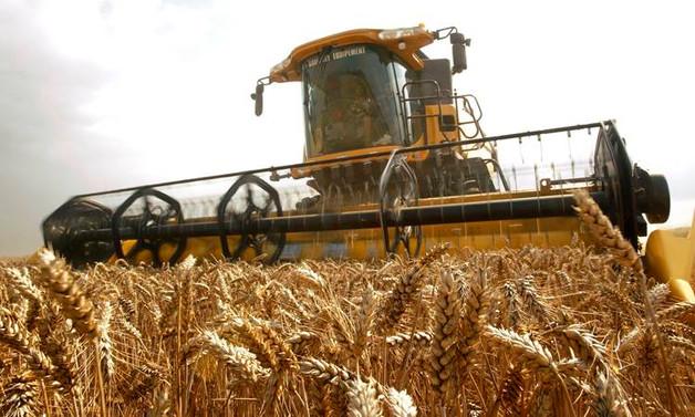 Tarım üretimine risk oluşturan La Nina enflasyonu körükleyebilir