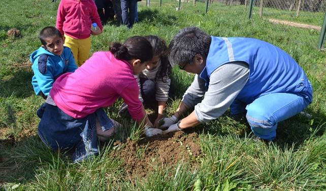 Posco Assan TST gönüllülerinin çevre duyarlılığı