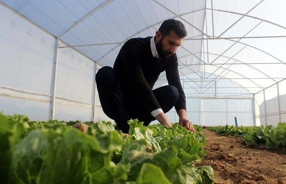 16 bin 750 genç çiftçiye daha hibe verilecek