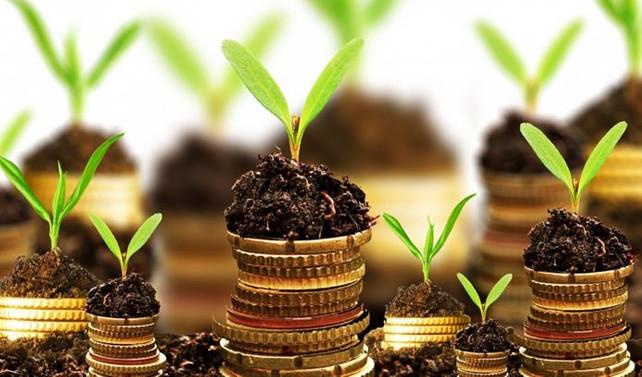 Organik tarım desteği başvurularında son gün 30 Mart