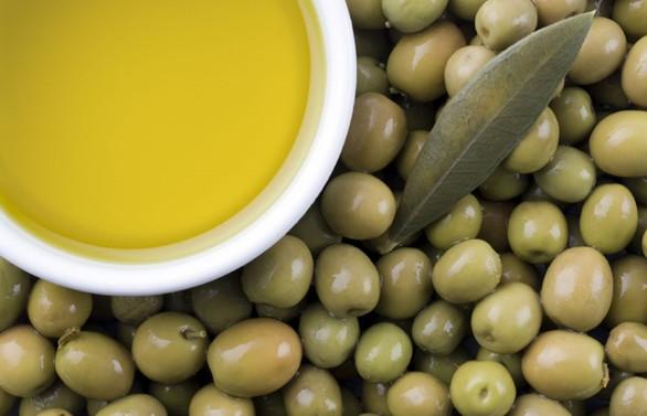 Zeytin ve zeytinyağı ihracatında rekor