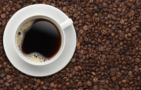 Eti Maden, kahvede verimliliği bor katkılı gübre ile artıracak