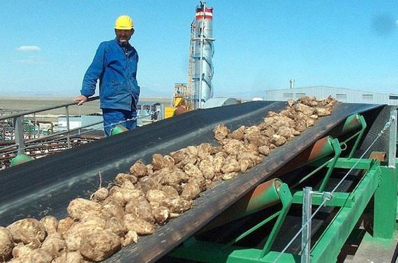 İki şeker fabrikası ihalesi için başvuru süresi uzatıldı