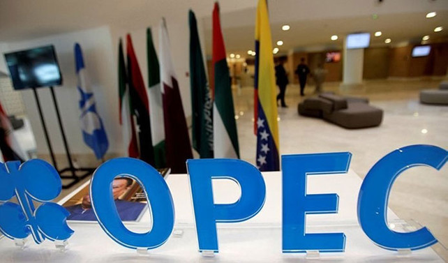 OPEC'in petrolde belirli bir fiyat hedefi yok