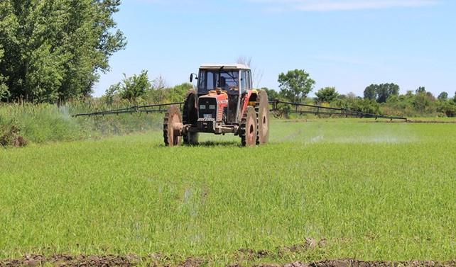 Tarım ÜFE yıllık bazda artış gösterdi