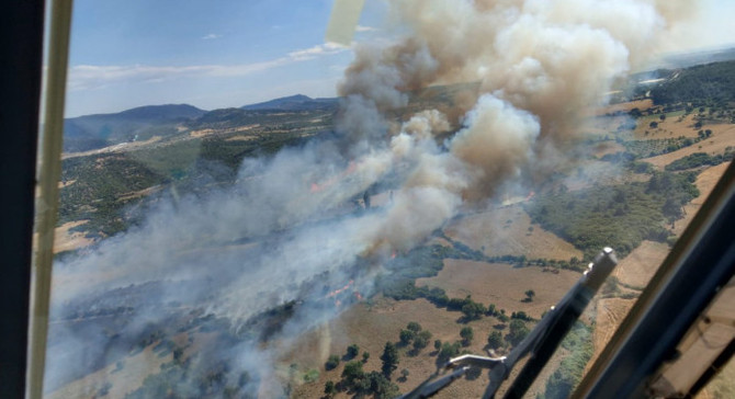 Çanakkale'de orman yangını