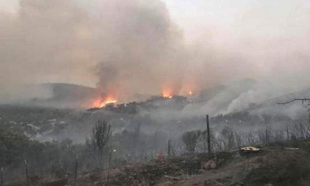 Kaliforniya'da yangın: Binlerce kişiye tahliye