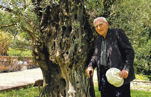 İstanbul'un ortasında bir botanik bahçesi