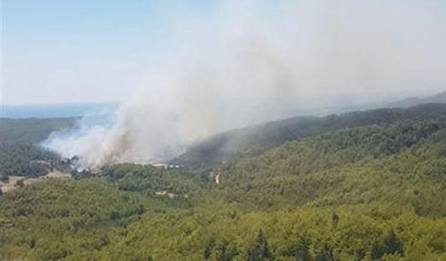 Antalya'da orman yangını: 1 uçak, 4 helikopter ile müdahale