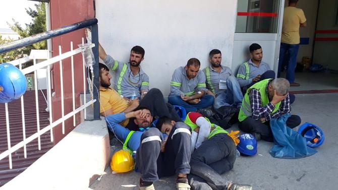 300 işçi gıdadan zehirlendi