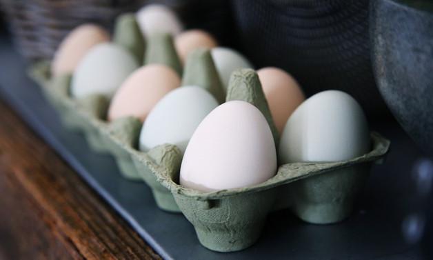 Yumurtada fiyat artışından üretici de mutsuz