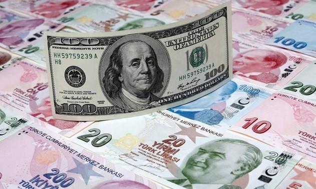Dolar, enflasyon sonrasında dalgalandı