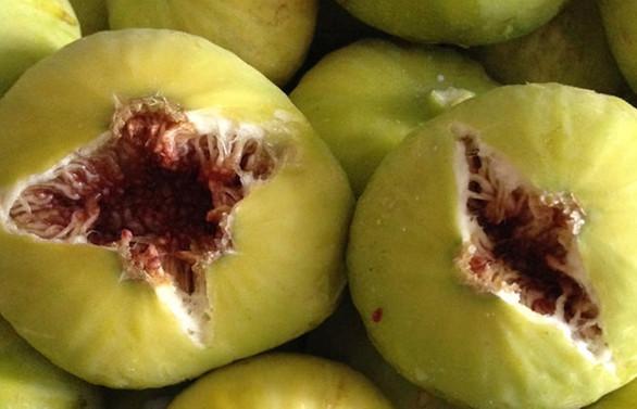 Bir aylık ihracat incir çekirdeğini doldurdu