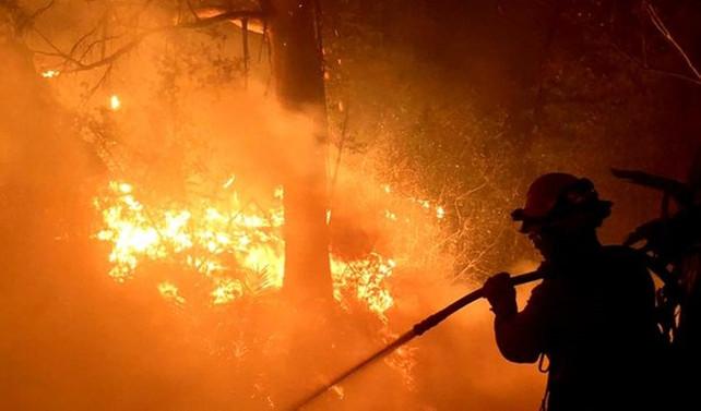 ABD'de yangın paniği: OHAL ilan edildi