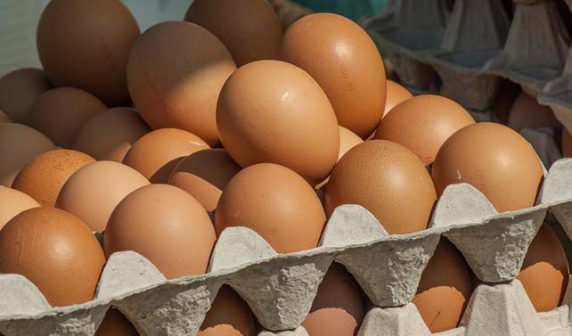 Yumurta ihracatı 12 yılda 20 kat arttı