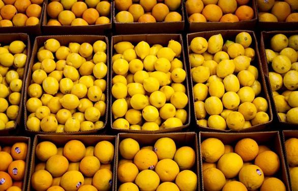 Temmuzda zam şampiyonu limon