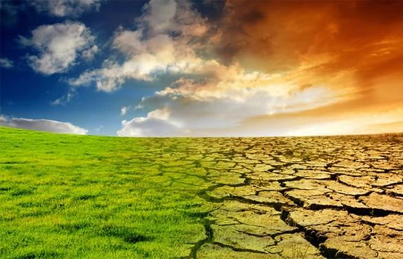 """İklimle mücadele için """"teknoloji ittifakı"""""""