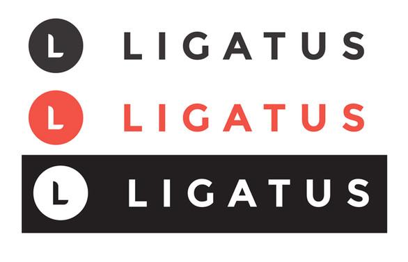 Ligatus, Türkiye'den çekiliyor