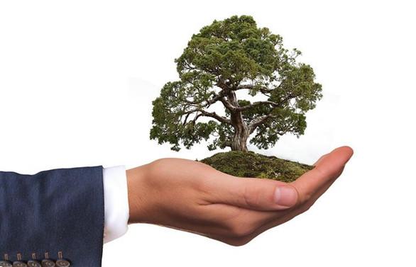Çevreyi korumaya 133,4 milyar lira harcadık