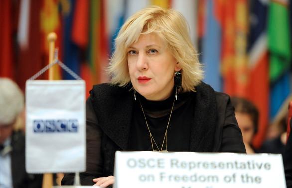 İnsan Hakları Komiseri: Fransa'daki durum endişe verici