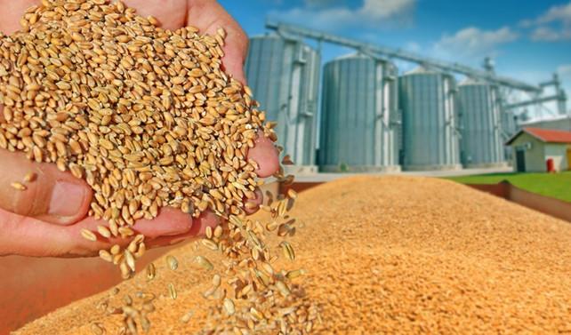 Rusya'dan tahıl OPEC'i kurulsun önerisi