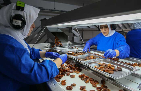 Çin'e gıda ihracatı yüzde 86 arttı