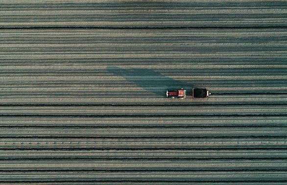 Türkiye'nin e-tarım stratejisi belirlenecek