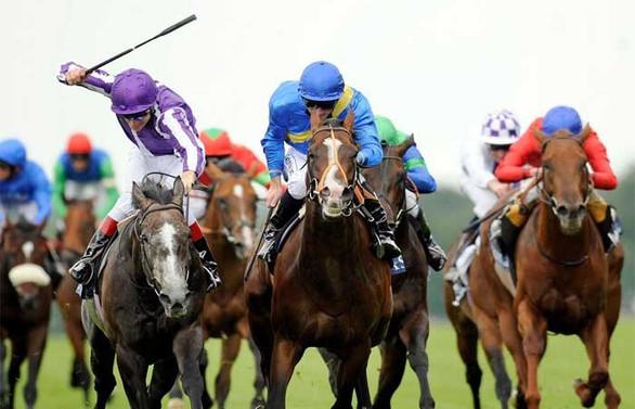 At yarışlarında ihale süreci başladı