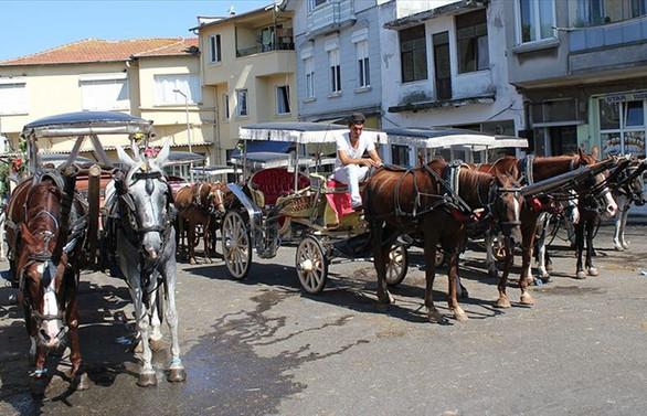 İstanbul Valisi: Faytonlara at koşulması 3 ay durduruldu