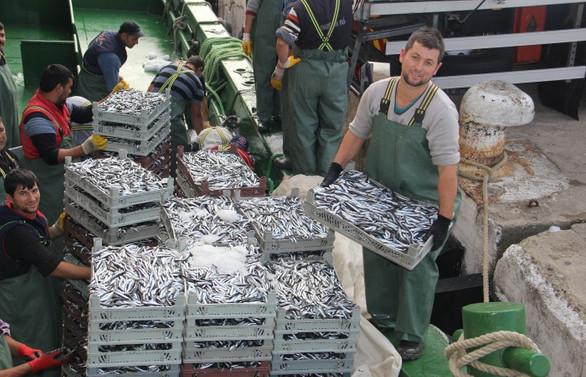 Balıkçıların umudu kalmadı