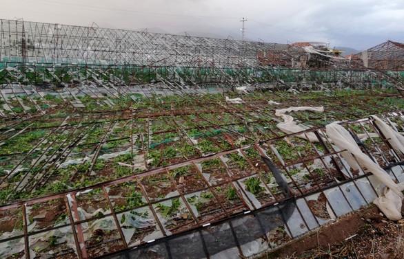 Meteorolojinin uyarısı sonrası gözler gıda fiyatlarında